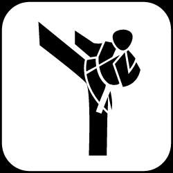 Leistungssport Karate